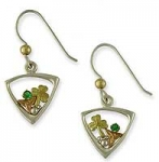 Silver and Gold Earrings SW390S